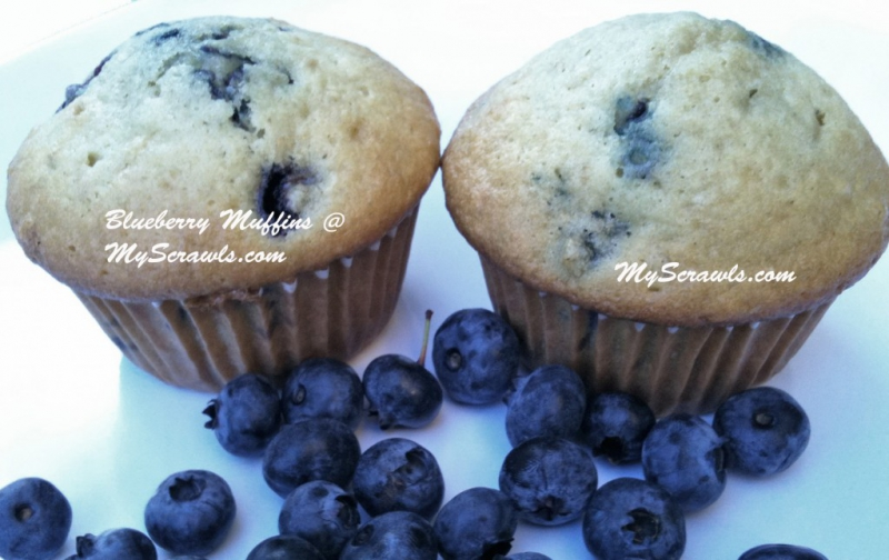 Blueberry muffins photo 2