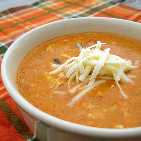 Chicken enchilada soup photo 3