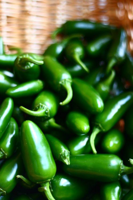 Enchilada sauce photo 2
