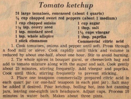 Homemade ketchup photo 2