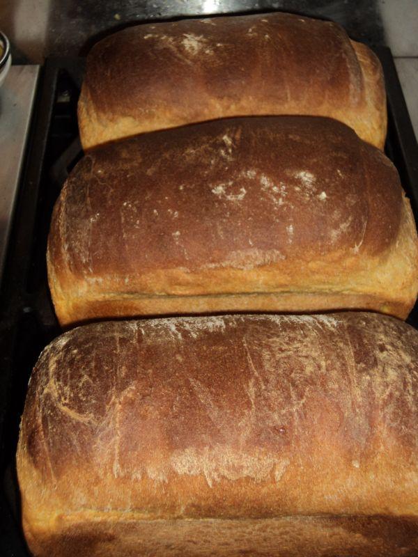 Potato bread photo 1