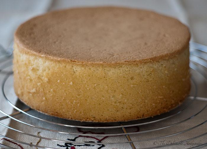 Sponge cake photo 3