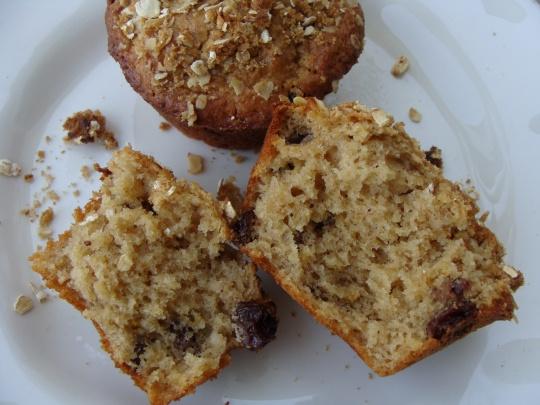 Oatmeal apple raisin muffins photo 1