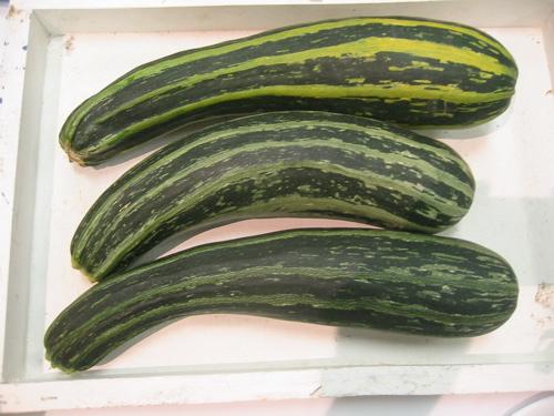 Zucchini jam photo 2