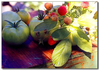 Green tomato pie photo 3