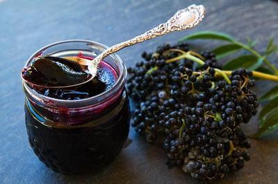 Elderberry jelly photo 2
