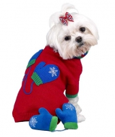 Dogs In A Sweater