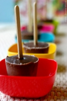 Chocolate Pudding Pops