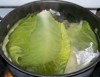 Boiled Cabbage