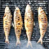 Barbecued Trout