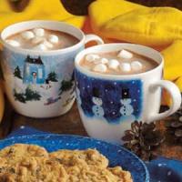 Hot Chocolate Mix
