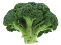 Bayou Broccoli