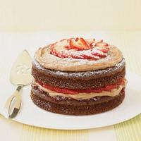 Chocolate Berry Shortcake